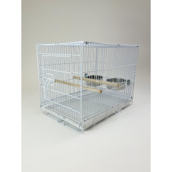 (2607-1) Collapsible Parrot...