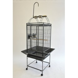 "(PL01) 20"" Play Top Parrot..."